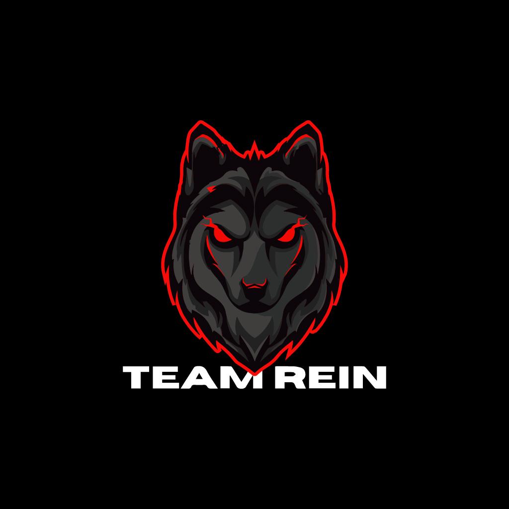 Team Rein